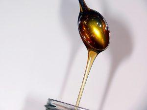 miód od pszczelarza cena