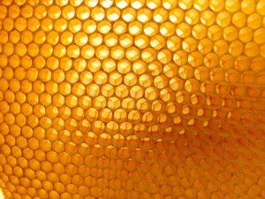 1. Api-inhalacje.pl - Węza pszczela